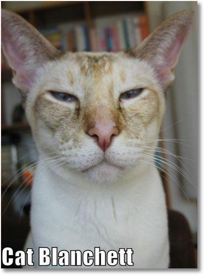 cat-blanchett